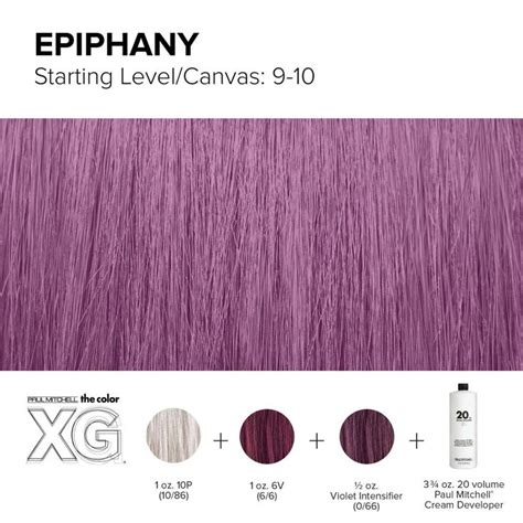 paul mitchell hair color best 25 paul mitchell color ideas on paul