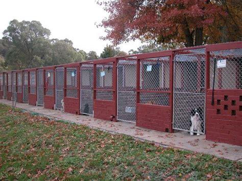 puppy in kennel kennel boarding ideas