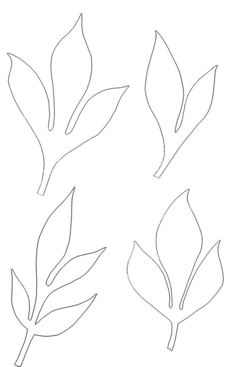 leaf paper template best 25 leaf template ideas on