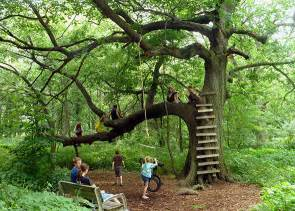 Backyard Climbing Wall For Kids - kid play zones in parks leave no trace inhibits fun and bonding with nature