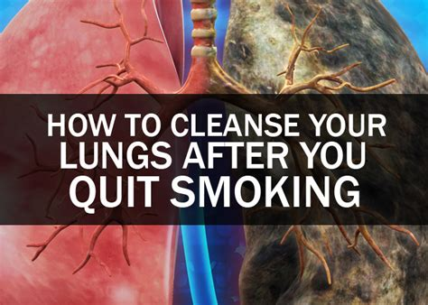 How To Detox Your After by How To Cleanse Your Lungs After You Quit Health