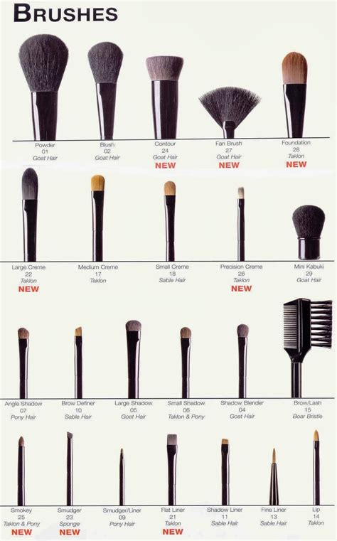 Eyeshadow Brush best makeup choice makeup brushes and their uses