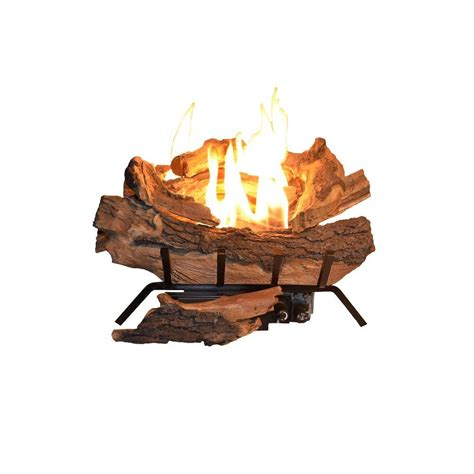 Emberglow Vent Free Fireplace by Emberglow American Elm 18 In Vent Free Propane Gas Fireplace Logs Aevf18falp The Home Depot