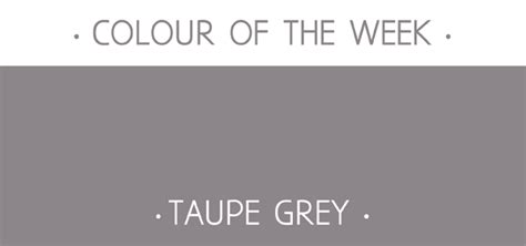 taupe grey colour rosie simons graphic and surface design colour of the