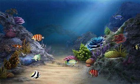 golden  hd fish wallpaper apk