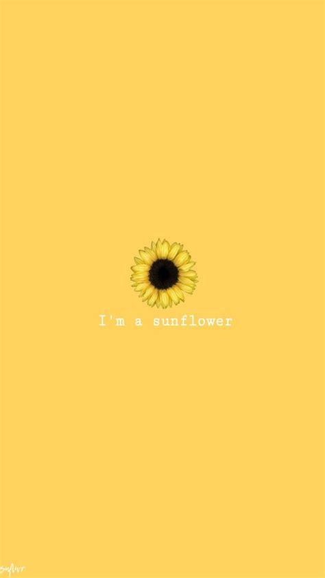 sunflower sunflower wallpaper yellow wallpaper sunflower iphone wallpaper