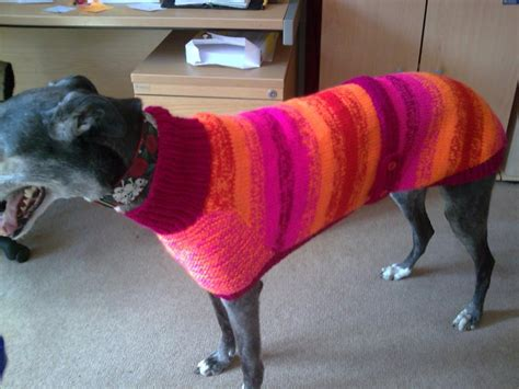 knitting for greyhounds knitted greyhound coat by greyhounds4me on deviantart