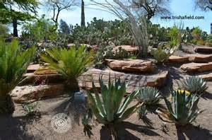 Ethel M Botanical Cactus Garden Back40 Bringing Back The Ways Ethel M Botanical Cactus Garden