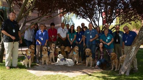 therapy las vegas therapy dogs help comfort those affected by las vegas shooting story wtxf