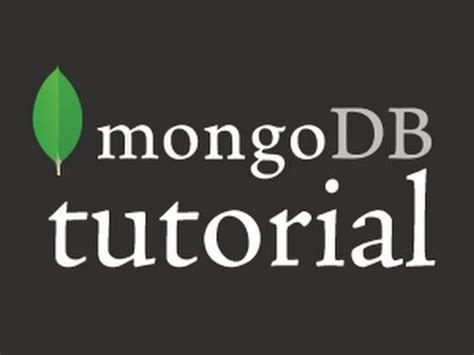 repository pattern mongodb c mongodb quickstart c deutsch funnydog tv