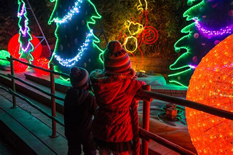 la zoo lights hours tickets la zoo lights season pass glaza ticketing