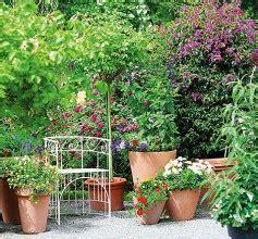 Ganzjahres Pflanzen by Pflanzen Kaufen Bei Hornbach Ch