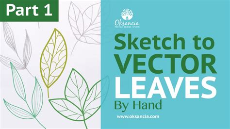 sketch to vector tutorial video how to live trace in illustrator turn a sketch