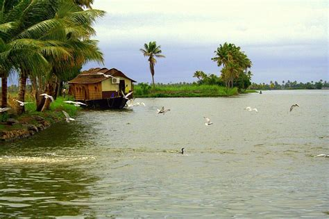 kerala boat house in december kerala boathouse natural images most beautiful images