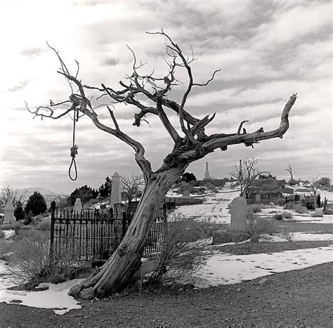 southern trees a strange fruit grannystandingfortruth strange fruit in 2010