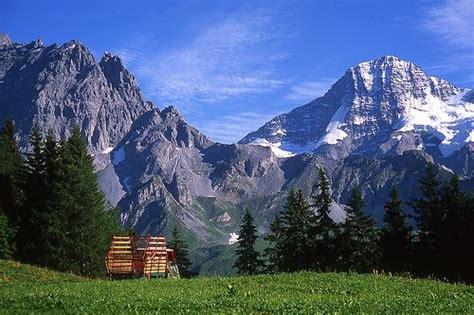 swiss alps the swiss alps switzerland tourist destinations