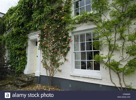 house climbing plants large period house with sash windows and climbing plants
