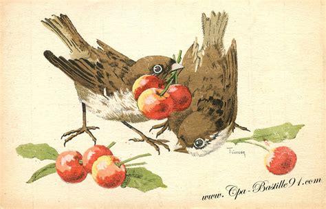 Délicieux Eclaircir Des Poutres Anciennes #1: cartes-postales-anciennes-les-oieseaux-de-Trimm-2.jpg