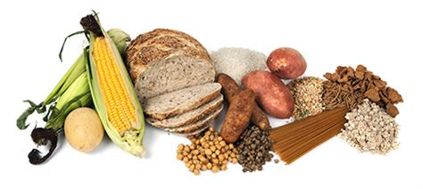 26 g carbohydrates carbohydrates starchy carbohydrates