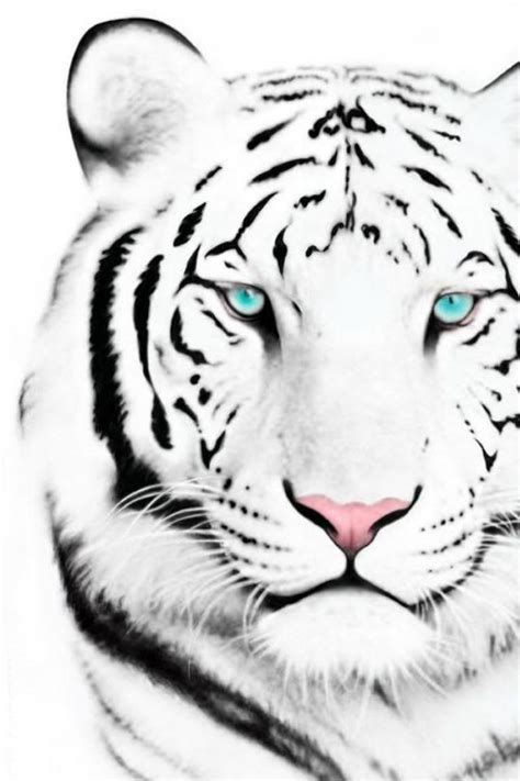 tiger tattoo hd wallpaper white tiger iphone 4 wallpaper by supamade09 on deviantart