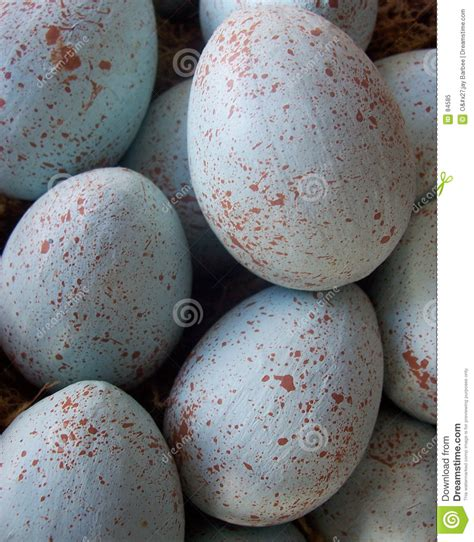 Easter Eggs Handmade - easter eggs royalty free stock photo image 84585