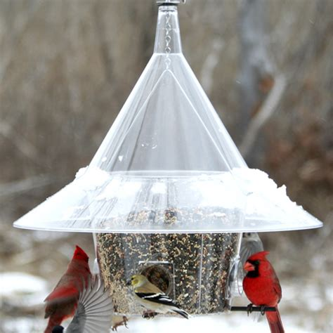 Mandarin Bird Feeder duncraft arundale mandarin squirrel proof bird feeder