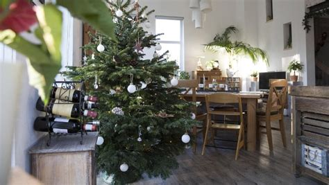 weihnachtsbaum mit guter pflege bleibt der christbaum