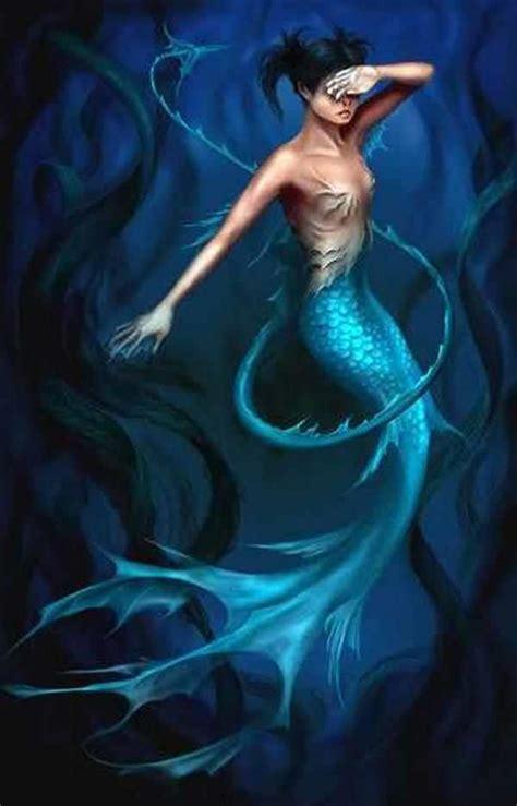 the mermaid s beautiful mermaids mermaids photo 19651092 fanpop