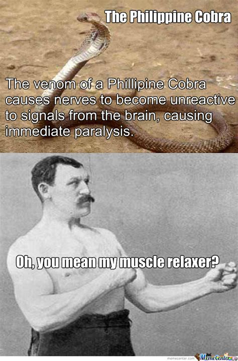 Muscle Memes - intense muscle relaxer by funstuff meme center