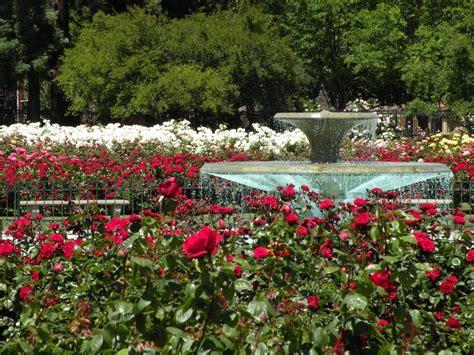 San Jose Garden by Joe Julie San Jose Municipal Garden