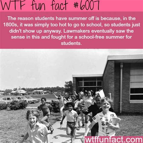 7 Facts On Summer by Its A Fact Really Summer Schools