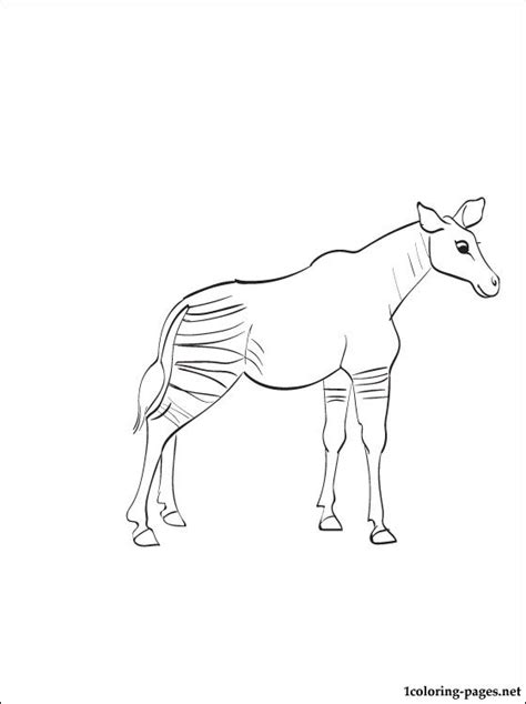 Okapi Coloring Page To Print Out Coloring Pages Okapi Coloring Pages