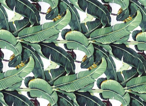 banana tropical wallpaper tropical leaf wallpaper wallpapersafari
