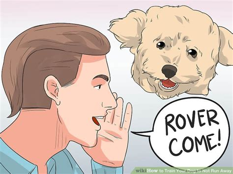 how to my not to run away how to your to not run away with pictures wikihow