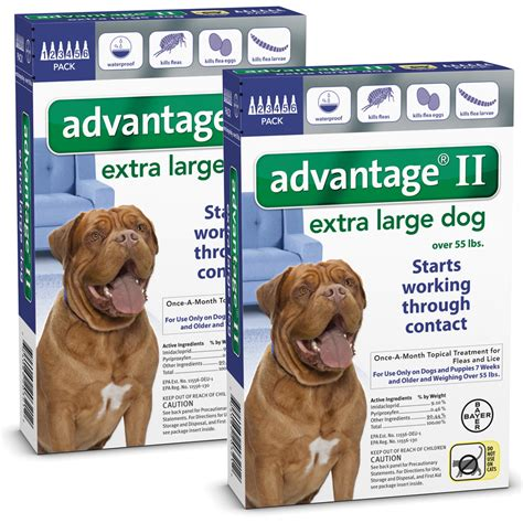 advantage for dogs 55 lbs 12 month advantage ii flea large for dogs 55 lbs