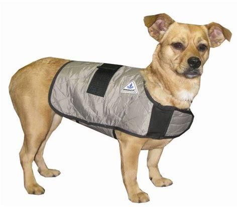 cooling vest for dogs cooling vest keepdoggiesafe