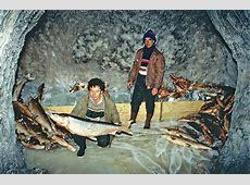 Storing fish in a permafrost ice cellar, Lena Delta ... Lena View