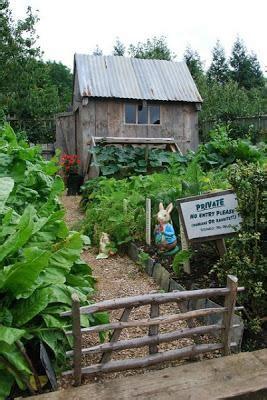 lavori giardino febbraio nell orto e in giardino i lavori di febbraio paperblog