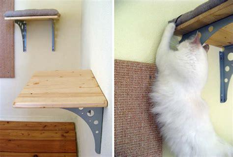 eva s custom cat shelves with cushions and sisal scratcher