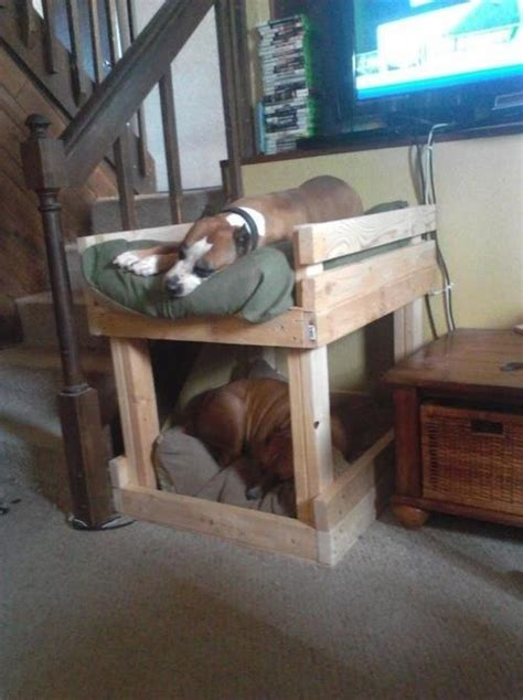 dog bunk beds 17 best images about cool dog beds kennels on pinterest grey duvet covers old