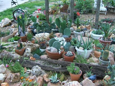 April 2015 Ujang Ma Cactus Rock Garden