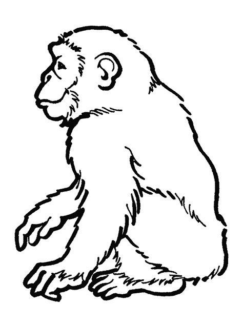 orangutans coloring pages ideas