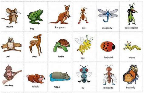 nama hewan  bahasa inggris
