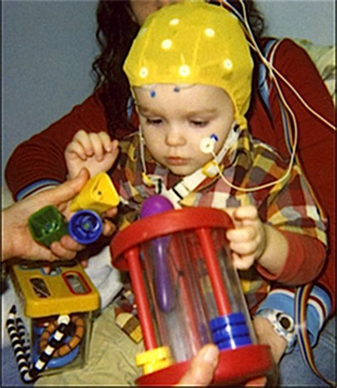 Were Your Childhood Toys A Predictor Of What Of Person Youd Become by Early Brain Responses To Words Predict Developmental