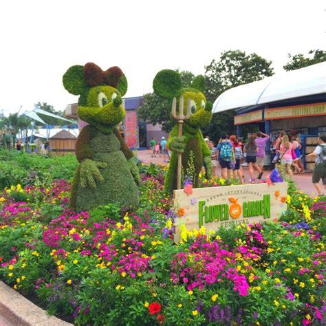epcot international flower garden festival epcot international flower garden festival