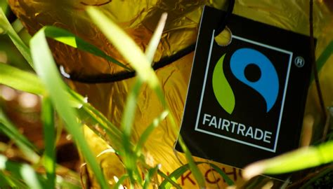 A Fairtrade Picnic With New Consumer by Bite World Fair Trade Day Flanders Today