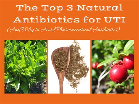 what can you give a for urinary tract infection the 3 most powerful antibiotics for a uti