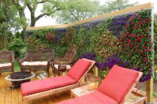 living wall screen garden ideas pinterest
