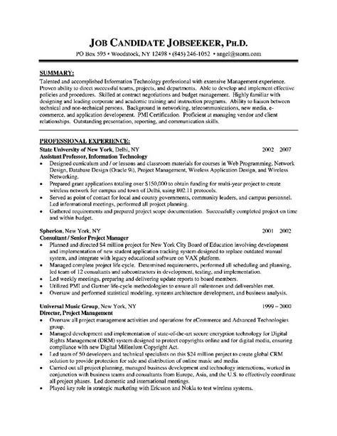 resume format for senior executive free sles