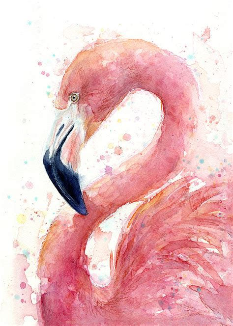 flamingo watercolor painting painting by olga shvartsur